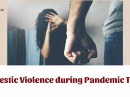 Domestic Violence during Pandemic Times